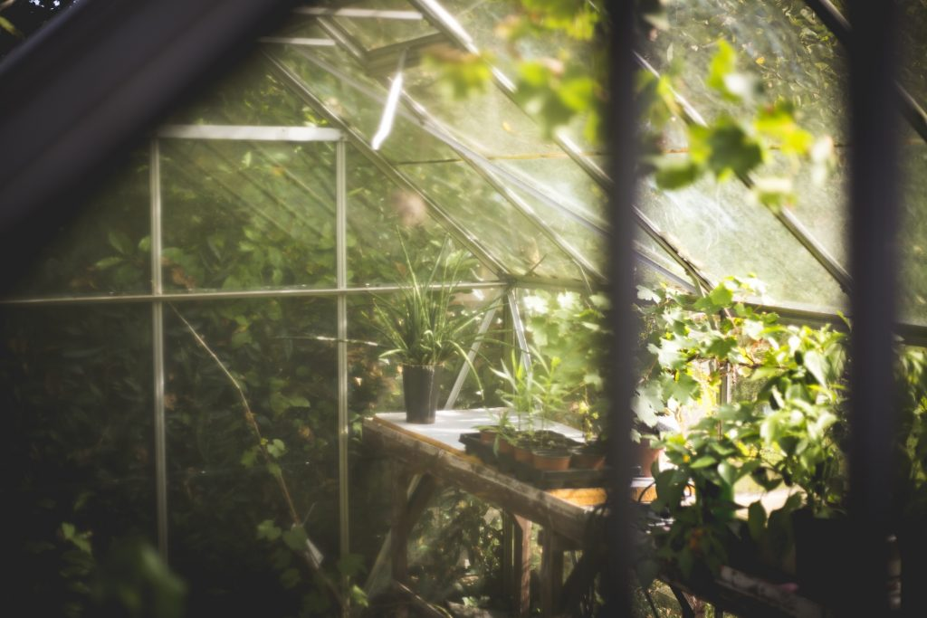 """Proteggi il tuo orto con la micro serra """"fai da te"""""""