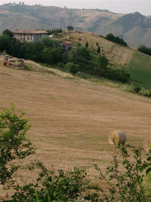 AGRITURISMO LA BIZENTINA