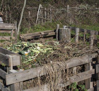 Compost, l'umidità al punto giusto