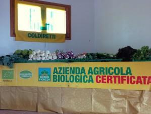 BOSCO FICUZZA AZIENDA AGRICOLA BIOLOGICA S. C.