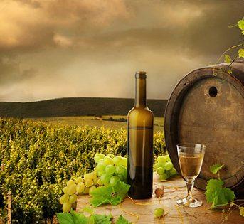 La spesa dei turisti aumenta solo per cibo e vini: +43%
