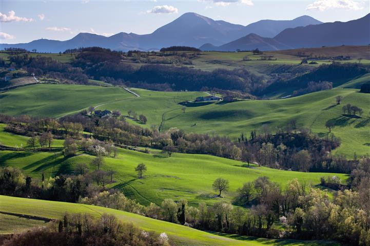 """L'agricoltura italiana è la più """"green"""" d'Europa ..."""