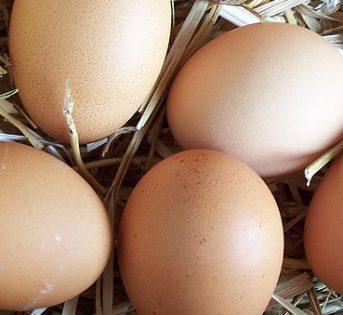 """Le uova """"ruspanti"""" regine della tradizione"""