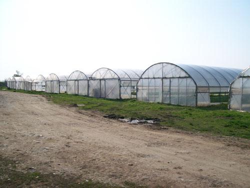 Azienda Agricola Mondino