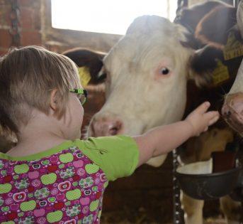 Giornata mondiale disabilità, il ruolo dell'agricoltura