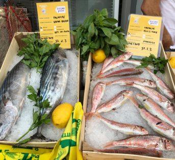 Acquisti più sicuri e consapevoli al banco del pesce con le giuste informazioni