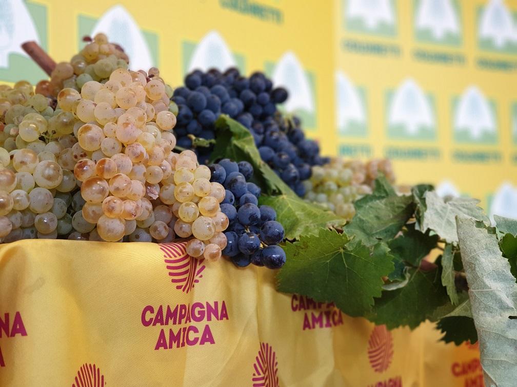 Spesa di settembre, nei mercati arrivano uva e funghi