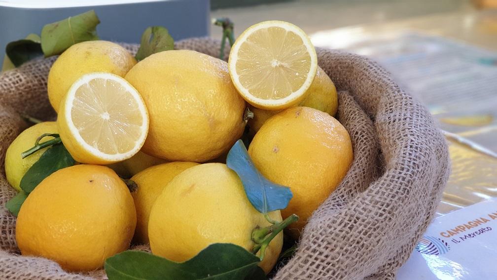 Limone, il frutto gioioso dai mille usi e proprietà