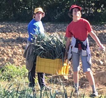 Agricoltura Sociale: il territorio in cammino