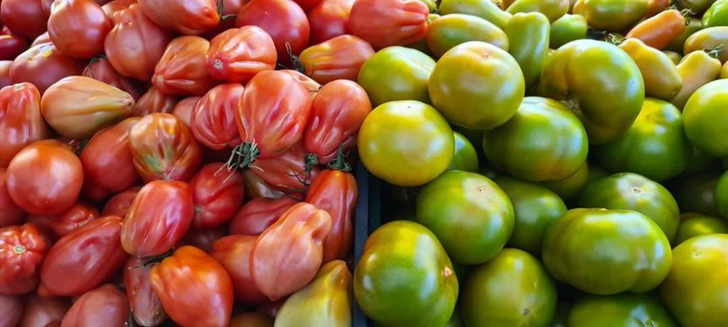Pomodoro, il re della dieta mediterranea
