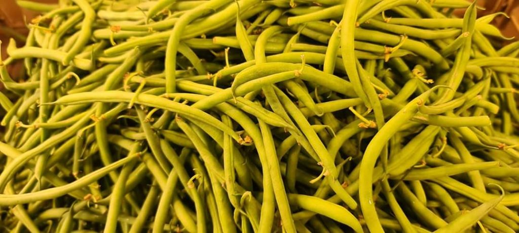 Fagiolini, i legumi amici delle ossa