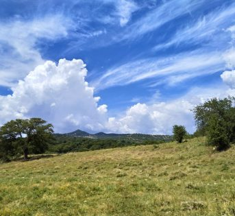 Giornata mondiale ambiente: è il momento della natura!