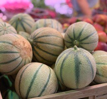 Melone, la dolcezza tipica dell'estate