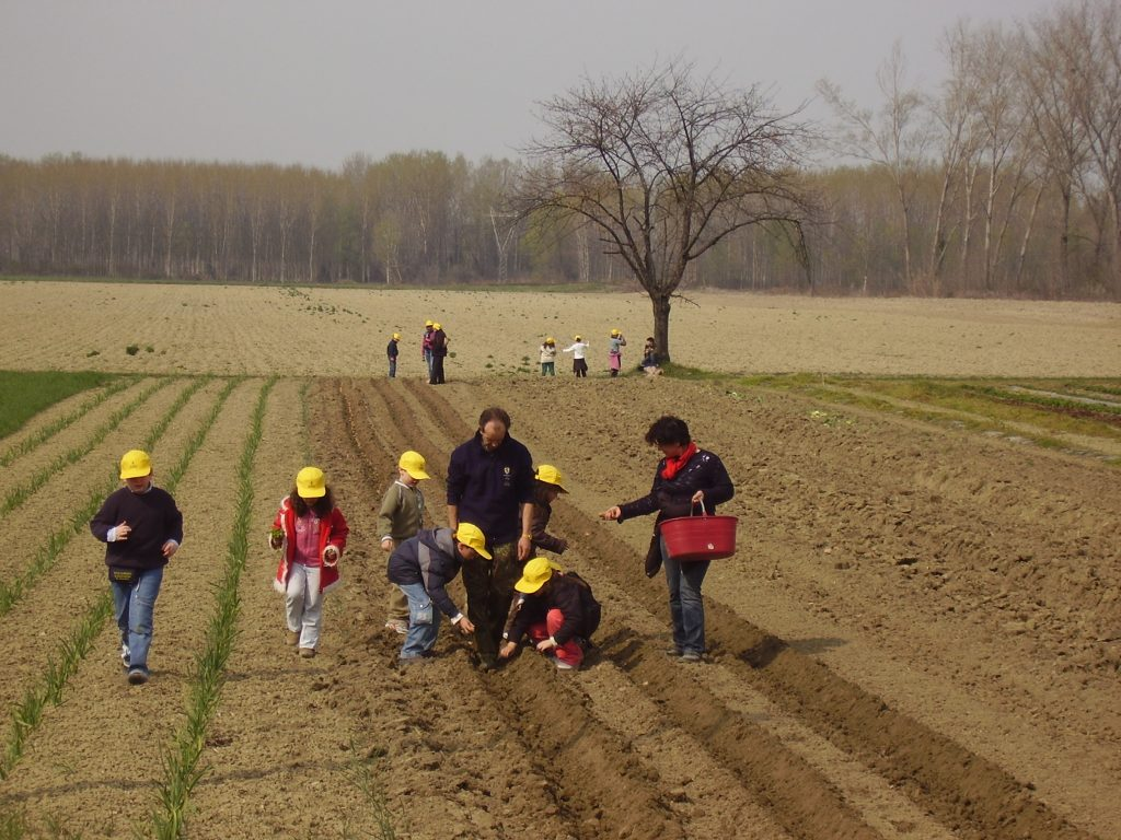 Welfare: Inipa Coldiretti Educational forma i manager di Agricoltura Sociale