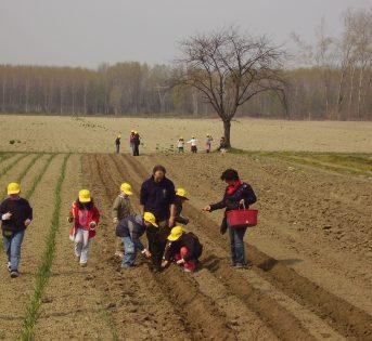 Welfare: Inipa Coldiretti Educational forma i manager di Agricoltura Sociale