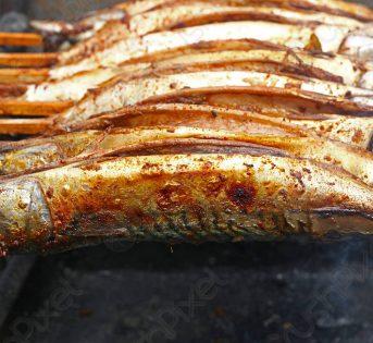 La ricetta di giugno: sugarelli ripieni al forno
